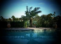 West Palm Beach Swimming Pool Aluminum Fence Installation
